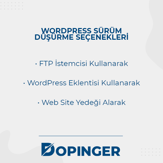 Wordpress sürüm düşürme seçenekleri